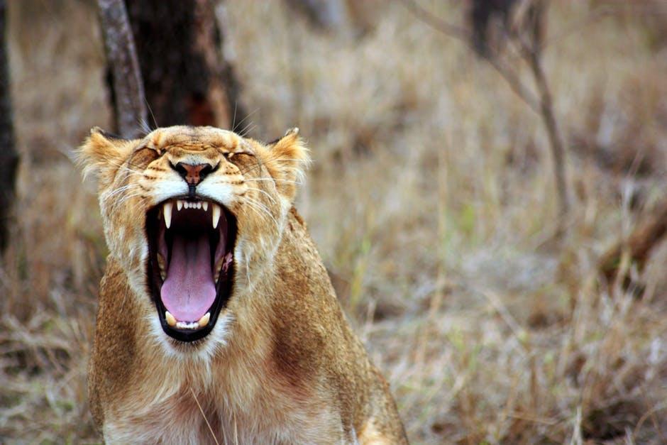 X tipů jak si poradit se vztekem